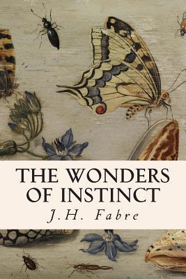 The Wonders of Insti...