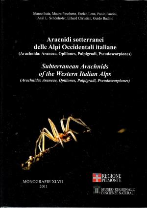 Aracnidi sotterranei delle Alpi Occidentali italiane. Arachnida: araneae, opiliones, palpigradi, pseudoscorpiones. Ediz. italiana e inglese