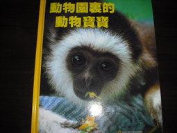 動物園裏的動物寶寶