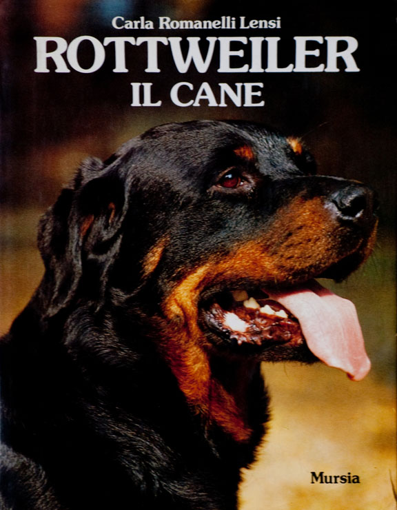 Rottweiler: il cane