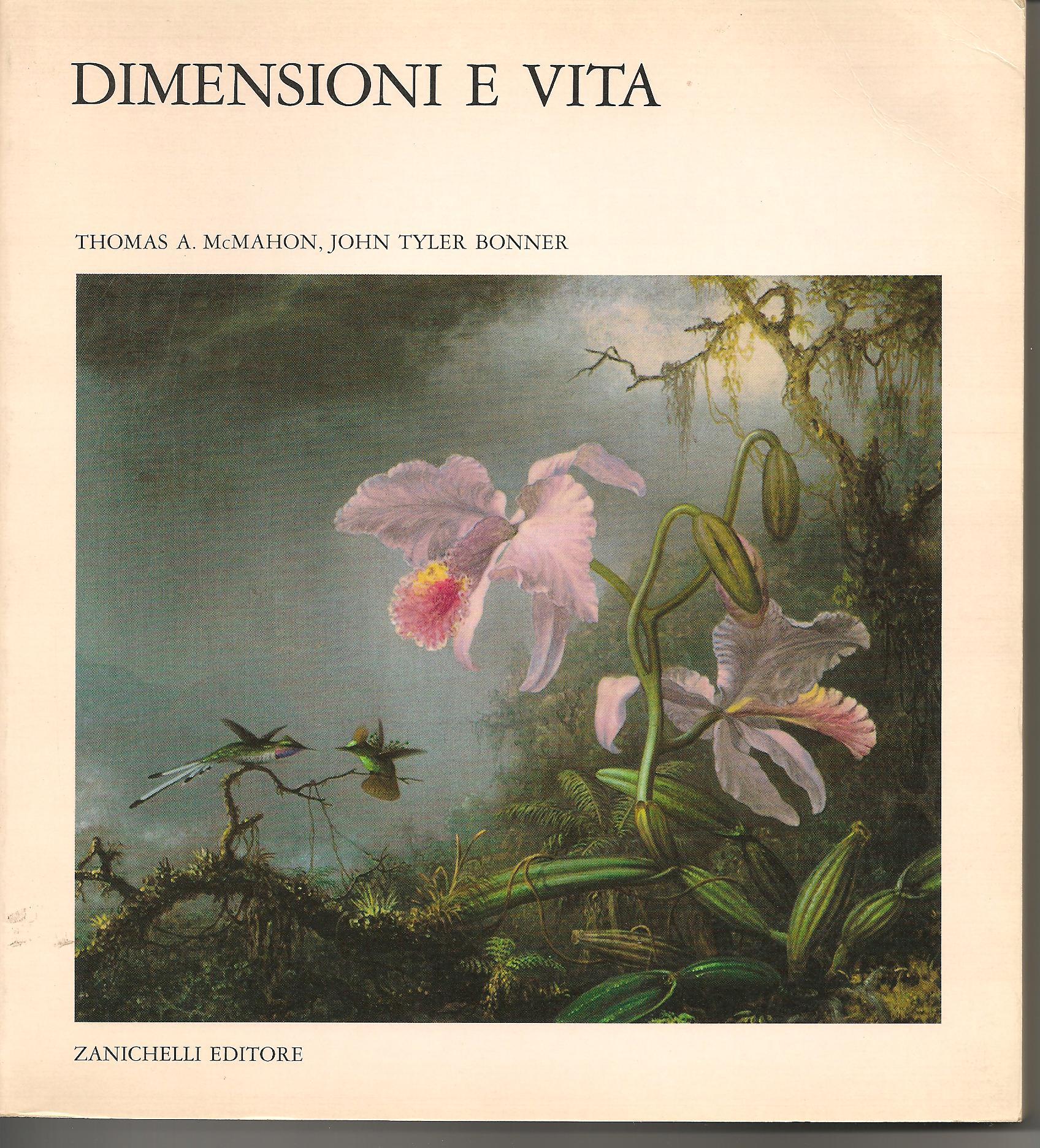 Dimensioni e vita
