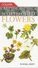 Scottish Wild Flower...