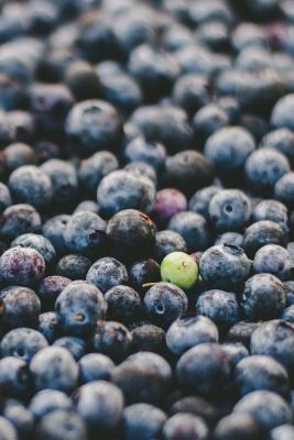 Blueberry Dreams Jou...