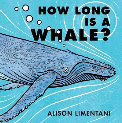 How Long Is a Whale?