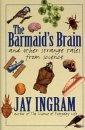Barmaid's Brain & Other Strang