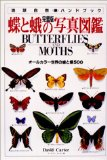 蝶と蛾の写真�...