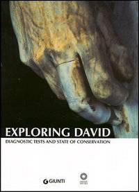 Exploring David. Diagnostic Tests and State of Conservation.