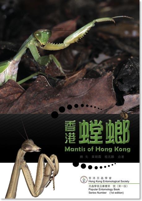 香港螳螂 Mantis of Hong Kong