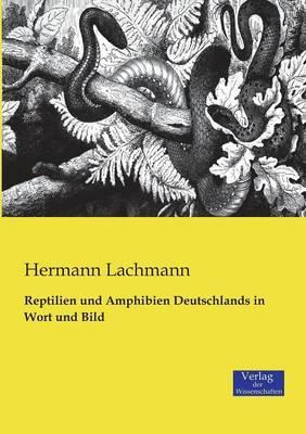 Reptilien und Amphibien Deutschlands in Wort und Bild