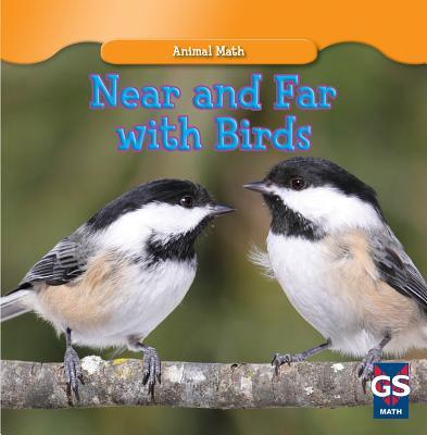 Near and Far with Birds