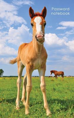 Cute Foal Logbook
