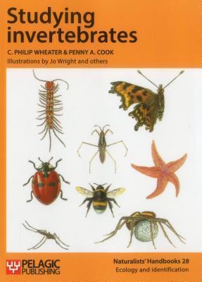 Studying Invertebrates