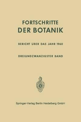Bericht Über Das Jahr 1960