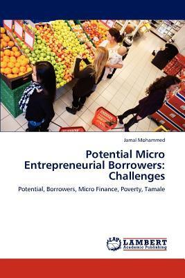 Potential Micro Entrepreneurial Borrowers