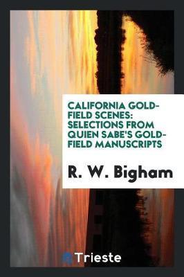 California gold-field scenes