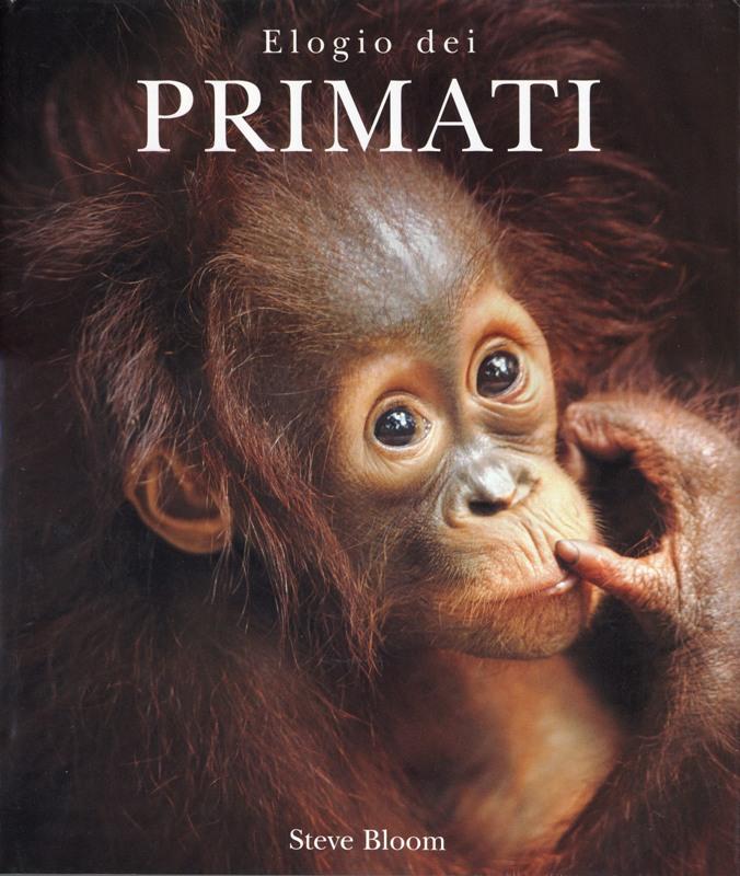 Elogio dei primati