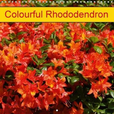 Colourful Rhododendron (Wall Calendar 2018 300 × 300 mm Square)