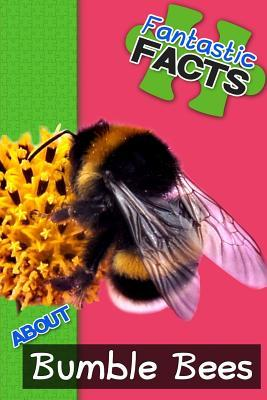 Fantastic Facts About Bumble Bees