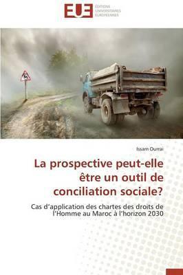 La Prospective Peut-Elle Être un Outil de Conciliation Sociale?