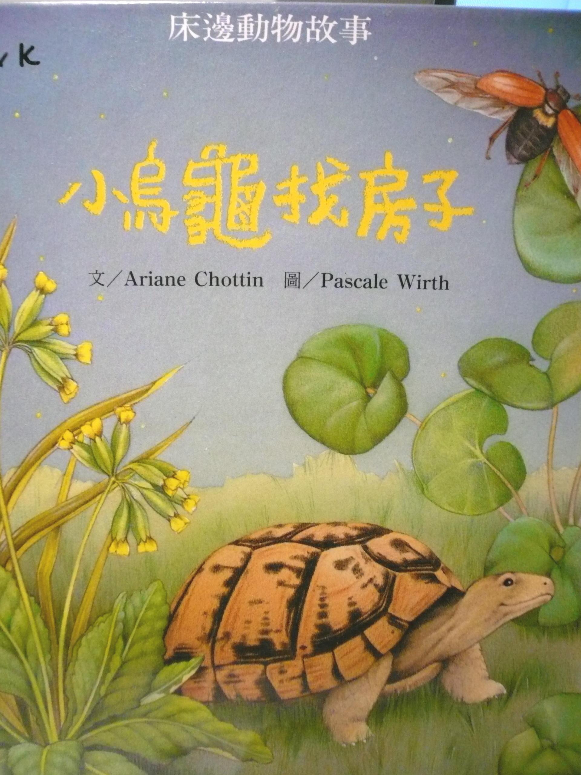 小烏龜找房子
