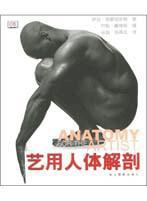 艺用人體解剖