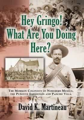 Hey Gringo! What Are You Doing Here?
