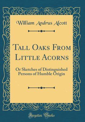 Tall Oaks From Littl...
