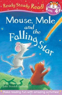 Mouse, Mole and the Falling Star (Ready Steady Read)