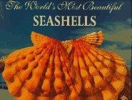 The World's Most Beautiful Seashells