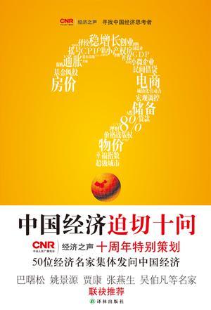 中国经济迫切十问