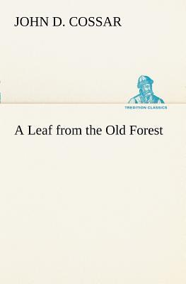 A Leaf from the Old Forest
