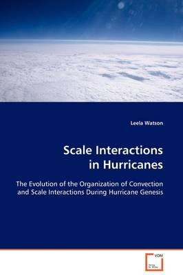 Scale Interactions in Hurricanes