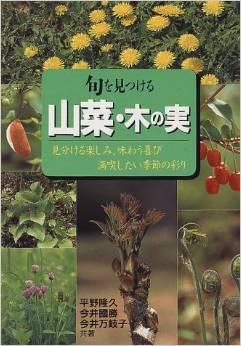 旬を見つける山菜・木の実