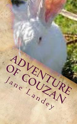 Adventure of Couzan