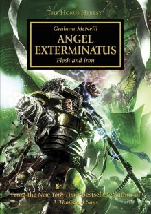 Angel Exterminatus