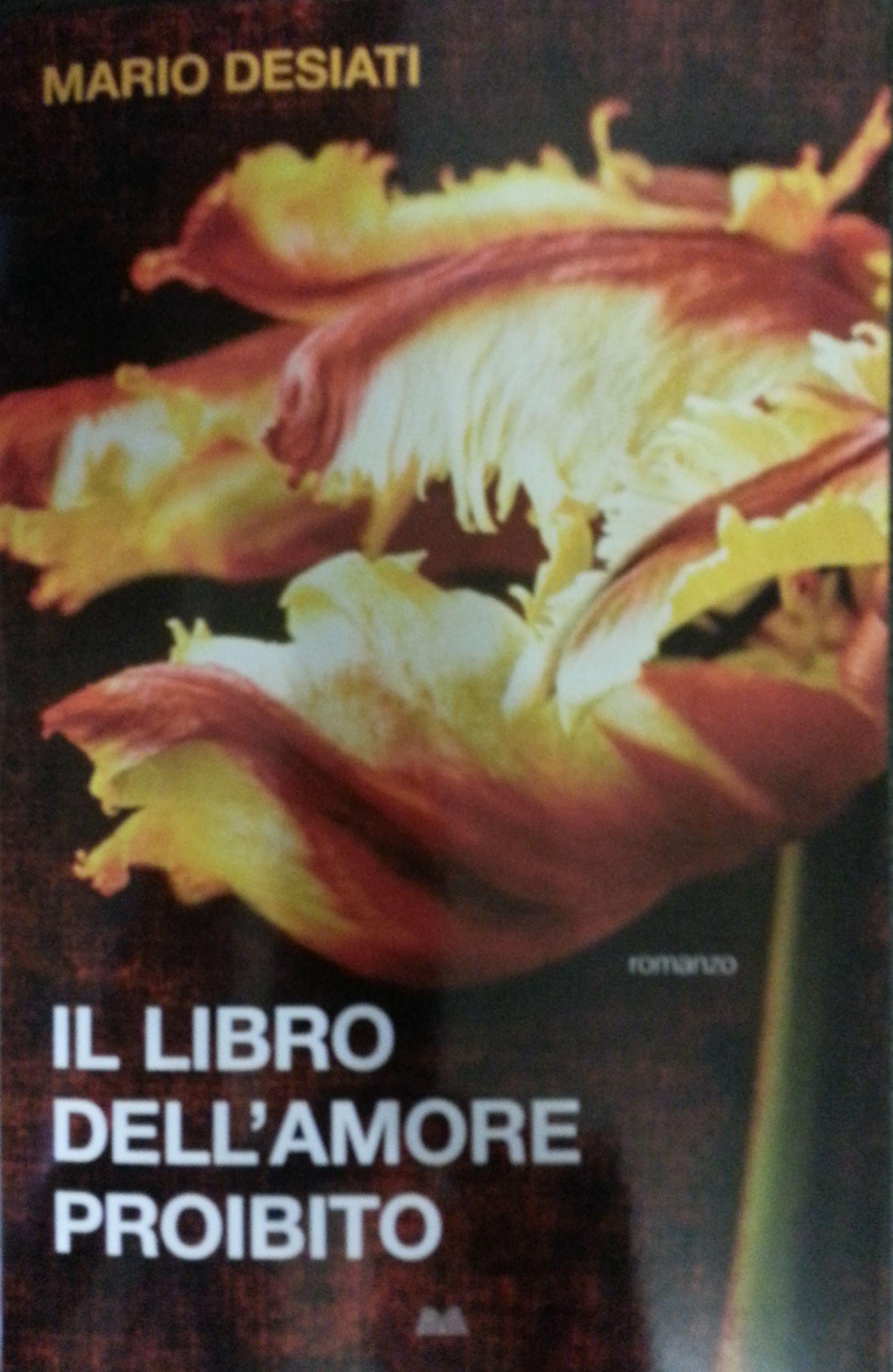 Il libro dell'amore proibito