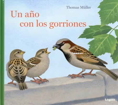 Un año con los gorriones / A Year with the Sparrows
