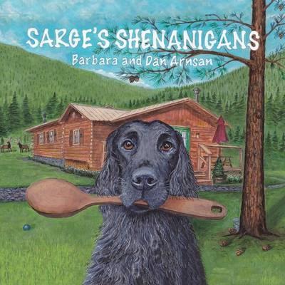 Sarge's Shenanigans