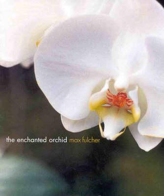 The Enchanted Orchid