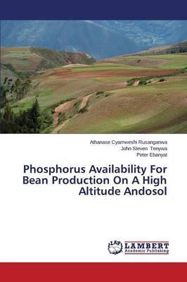Phosphorus Availability For Bean Production On A High Altitude Andosol