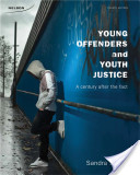 Young Offenders and Youth Justice