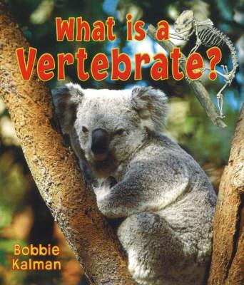 What Is a Vertebrate...