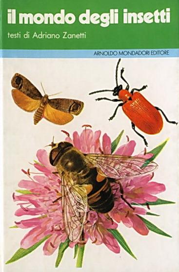 Il mondo degli insetti