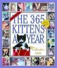 365 Kittens Calendar 2004