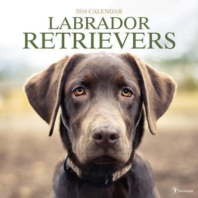 Labrador Retriever 2018 Calendar