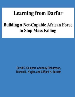 Learning from Darfur