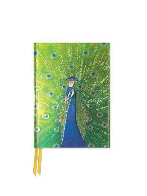 Peacock in Blue and Green Foiled Pocket Notebook