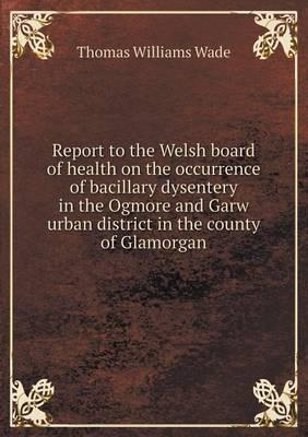 Report to the Welsh ...