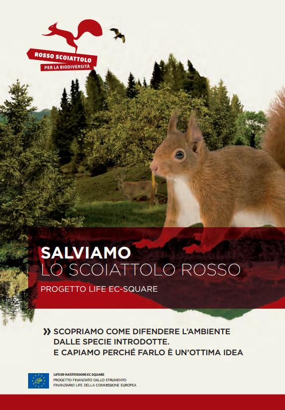 Salviamo lo scoiattolo rosso: progetto Life Ec-Square
