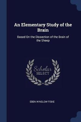 An Elementary Study of the Brain